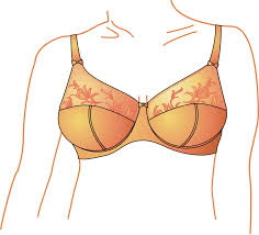 where to buy Goodman capsules, breast support bustline shaper