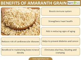 Amaranth price in kenya where to buy Amaranth reviews Amaranth side effects Amaranth ingredients Amaranth dosage Amaranth before and after photos Nairobi Kenya daresalaam tanzania juba south sudan Khartoum sudan Kigali Rwanda kampala Uganda bunjumbura Burundi kinshasaDRC Amaranth Maputo Mozambique accra Ghana Dakar Senegal Lusaka Zambia Monrovia angola jibouti asmara Eritrea tunis Tunisia rabat morocco cairo Egypt Harare zimbambwe Amaranth Mauritius Seychelles Pretoria south Africa Amaranth lagos Nigeria Amaranth shop capeverde eguitorial guinea mogadishu Somalia adisababa Ethiopia togo Liberia sierraleone Amaranth shop africa +254723408602